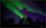 © Jan Helmer Olsen Karasjok IMG_0328