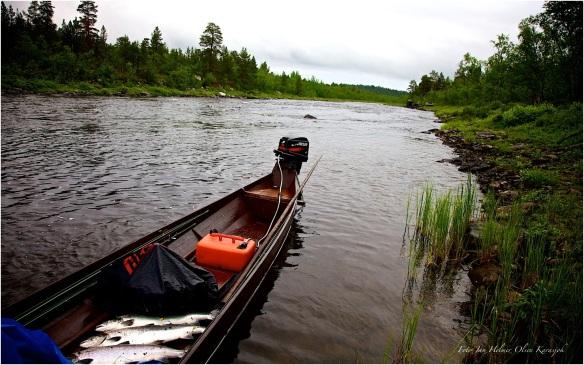 Elvebåten som brukes i elven Karasjohka