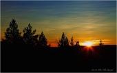 Sol IMG_1426